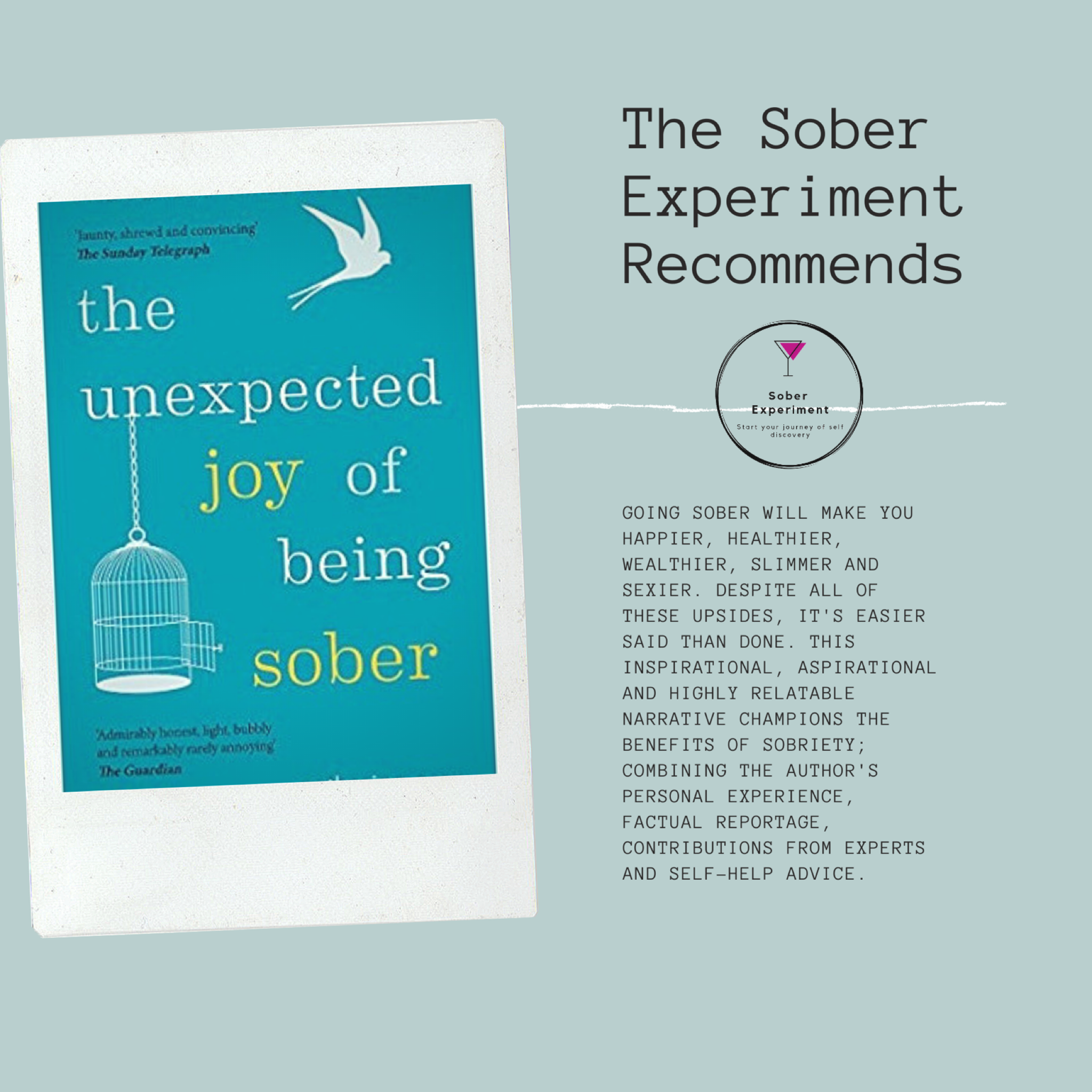 The Sober Experiment Recommends The Unexpected Joy of Being Sober by Catherine Gray