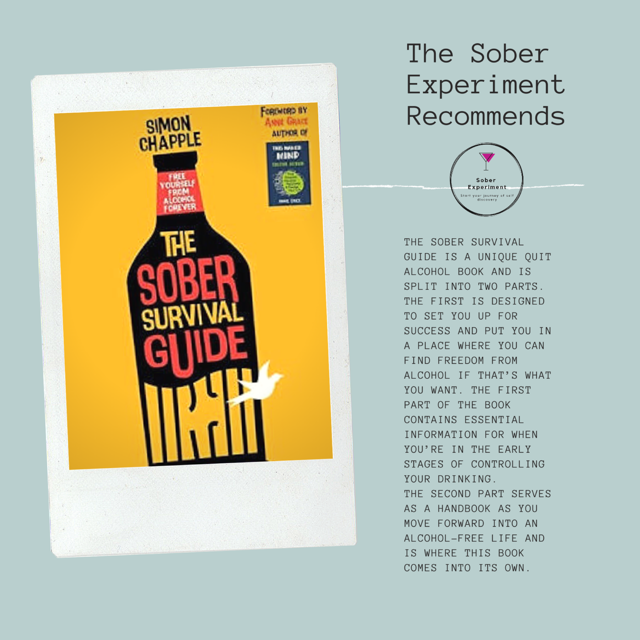The Sober Experiment Recommends The Sober Survival Guide by Simon Chapple
